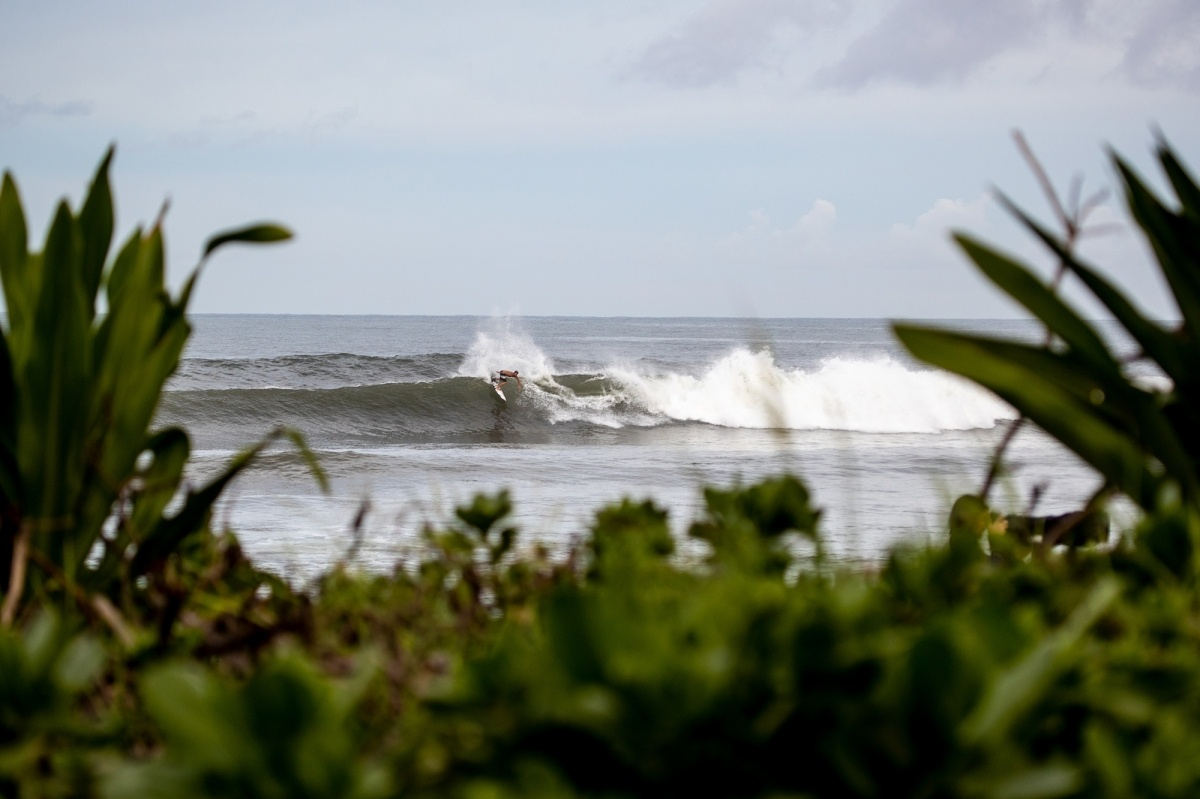 Morning warm up session at Haleiwa.   © WSL / Heff